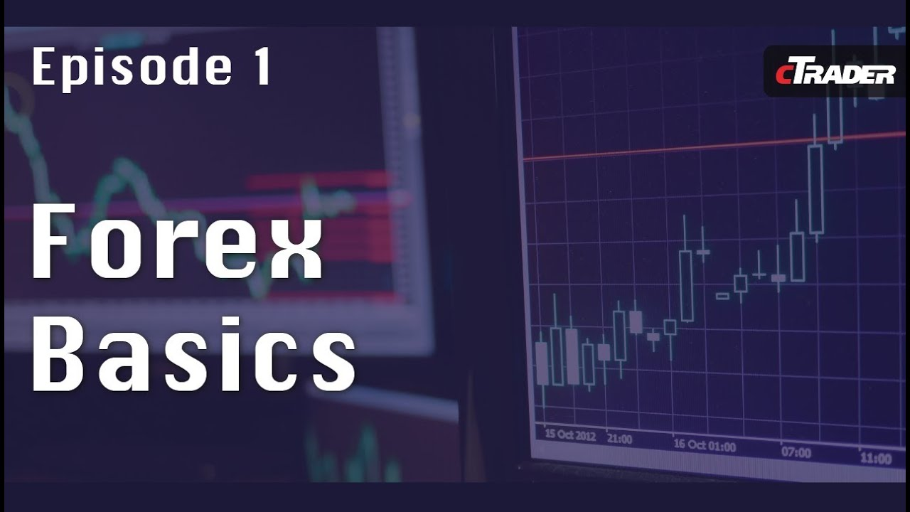 Choosing a broker for trade Forex2